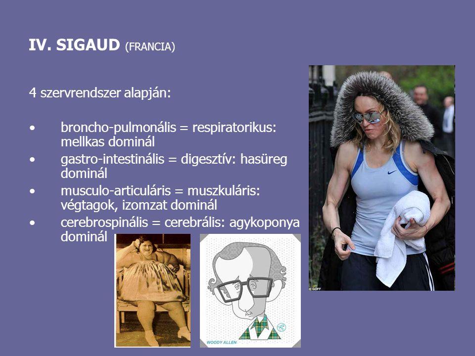 IV. SIGAUD (FRANCIA) 4 szervrendszer alapján: broncho-pulmonális = respiratorikus: mellkas dominál gastro-intestinális = digesztív: hasüreg dominál mu