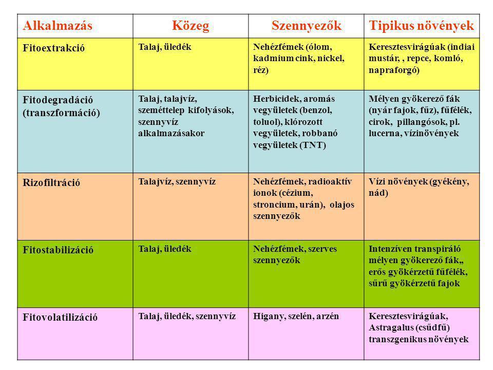 AlkalmazásKözegSzennyezőkTipikus növények Fitoextrakció Talaj, üledékNehézfémek (ólom, kadmium cink, nickel, réz) Keresztesvirágúak (indiai mustár,, repce, komló, napraforgó) Fitodegradáció (transzformáció) Talaj, talajvíz, szeméttelep kifolyások, szennyvíz alkalmazásakor Herbicidek, aromás vegyületek (benzol, toluol), klórozott vegyületek, robbanó vegyületek (TNT) Mélyen gyökerező fák (nyár fajok, fűz), fűfélék, cirok, pillangósok, pl.