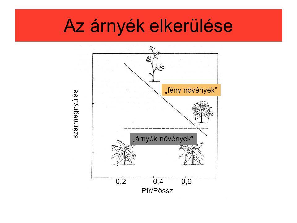 """Az árnyék elkerülése """"fény növények"""" """"árnyék növények"""" Pfr/Pössz szármegnyúlás 0,20,40,6"""