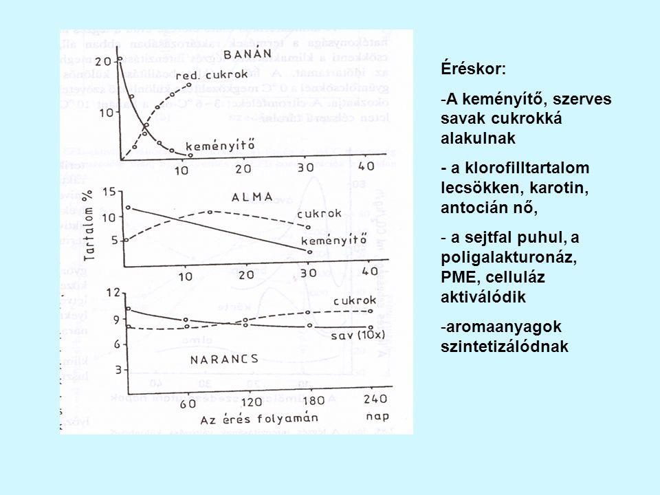 Éréskor: -A keményítő, szerves savak cukrokká alakulnak - a klorofilltartalom lecsökken, karotin, antocián nő, - a sejtfal puhul, a poligalakturonáz, PME, celluláz aktiválódik -aromaanyagok szintetizálódnak
