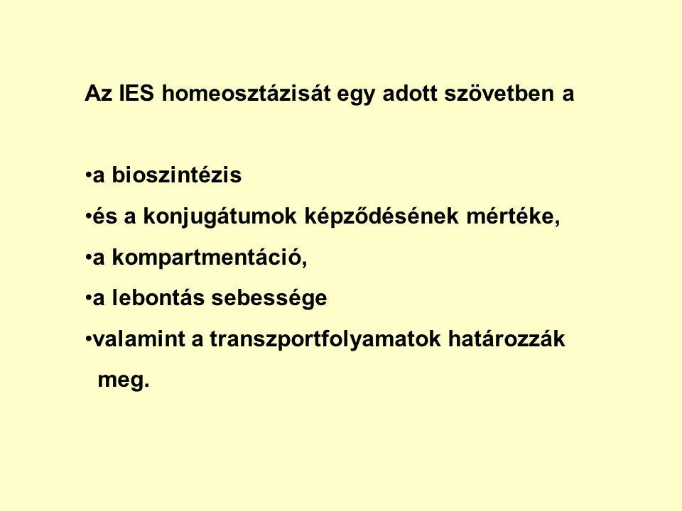 Az IES homeosztázisát egy adott szövetben a a bioszintézis és a konjugátumok képződésének mértéke, a kompartmentáció, a lebontás sebessége valamint a transzportfolyamatok határozzák meg.
