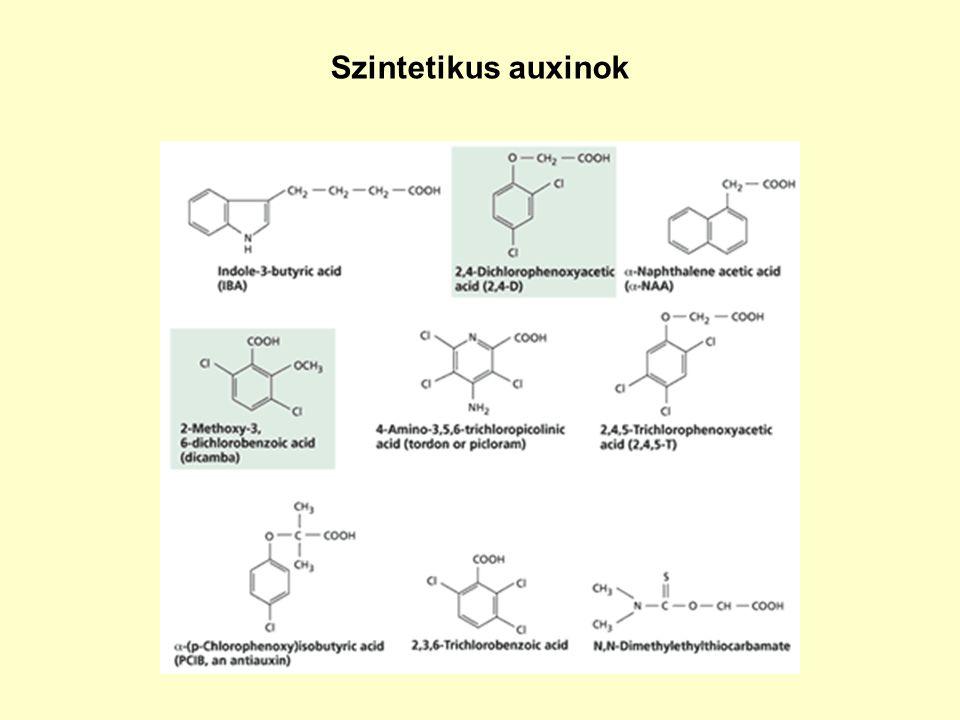 Szintetikus auxinok