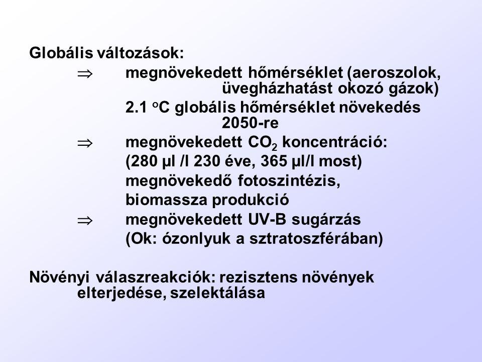 Cylindrospermum raciborskii Hepatotoxikus alkaloidot termel, cilindrospermopszin a neve.