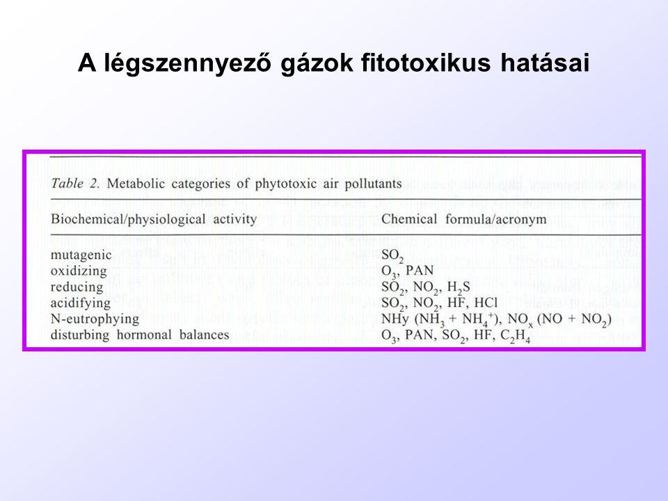 A halogénezett anyagok (dioxinok, halogénezett bifenilek) bioremediációs stratégiái: 1.tápanyagadagolás a mikróbáknak (N, P) és felületaktív anyagok használata 2.Levegőztetés (amennyiben vízből vonják ki) 3.A környezet beoltása jól degradáló baktériumokkal 4.Fitoremediáció: az algák és a növények jól felveszik, átalakítják és degradálják a szerves szennyezések egy részét.