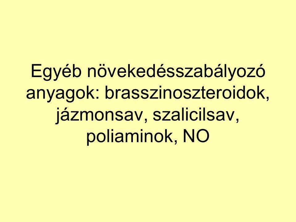 Egyéb növekedésszabályozó anyagok: brasszinoszteroidok, jázmonsav, szalicilsav, poliaminok, NO
