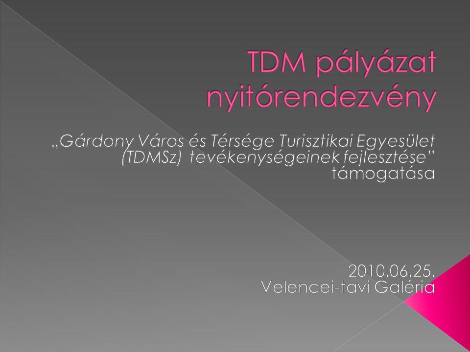14.30 Regisztráció 15.00 Köszöntő – Vértes Tibor, elnök 15.05 Megnyitó – L.