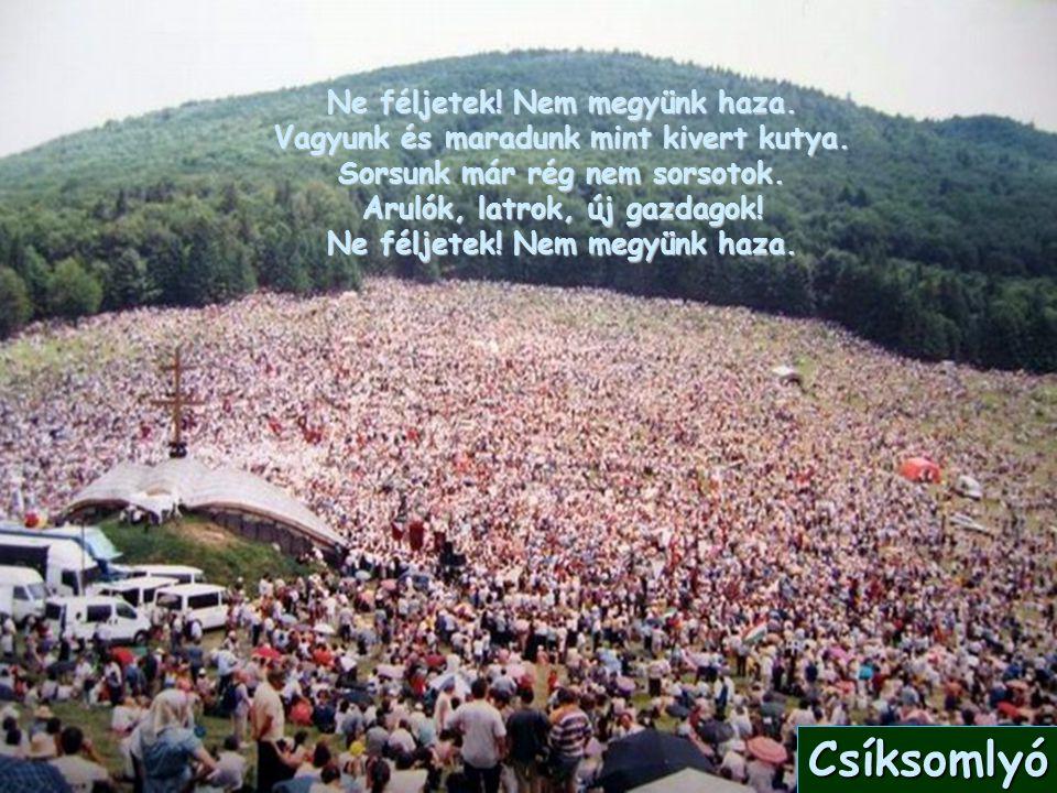 Hazugság népe, te gyáva, te ostoba. Ahol mi élünk, az mind Magyar sziget.