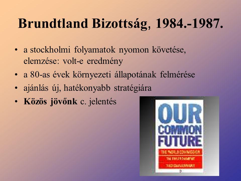 Brundtland Bizottság, 1984.-1987. a stockholmi folyamatok nyomon követése, elemzése: volt-e eredmény a 80-as évek környezeti állapotának felmérése ajá