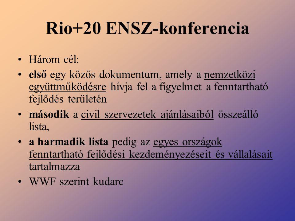 Rio+20 ENSZ-konferencia Három cél: első egy közös dokumentum, amely a nemzetközi együttműködésre hívja fel a figyelmet a fenntartható fejlődés terület