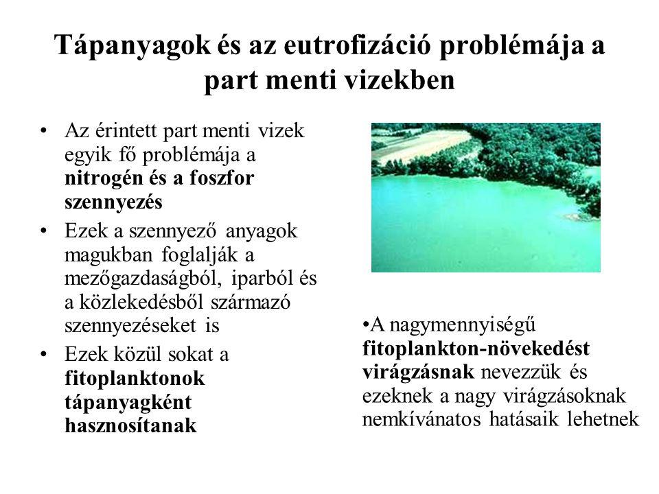 Tápanyagok és az eutrofizáció problémája a part menti vizekben Az érintett part menti vizek egyik fő problémája a nitrogén és a foszfor szennyezés Eze