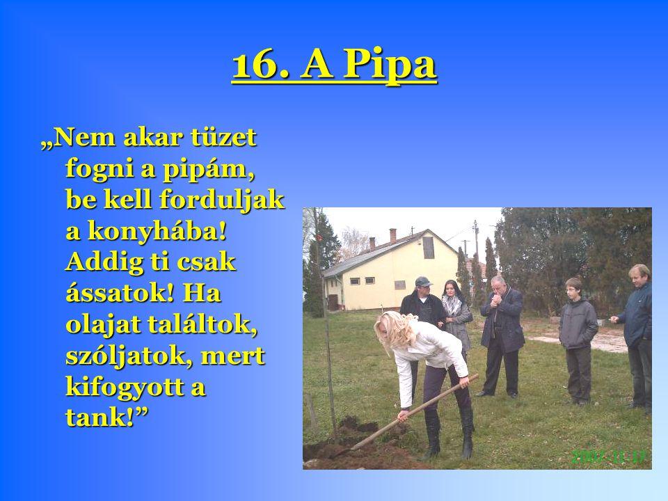 """16. A Pipa """"Nem akar tüzet fogni a pipám, be kell forduljak a konyhába."""