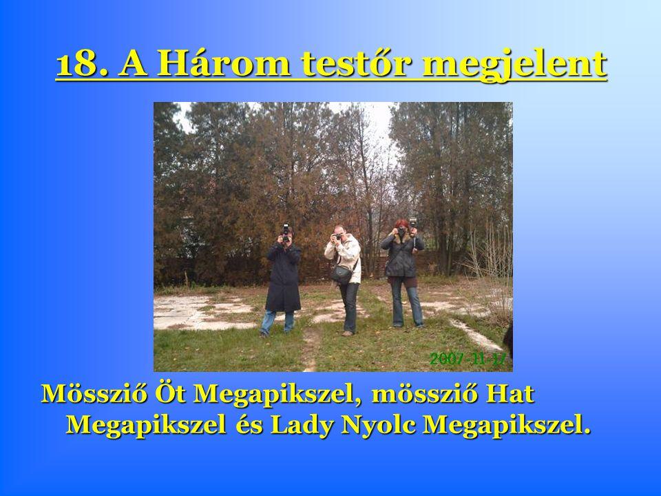 18. A Három testőr megjelent Mössziő Öt Megapikszel, mössziő Hat Megapikszel és Lady Nyolc Megapikszel.
