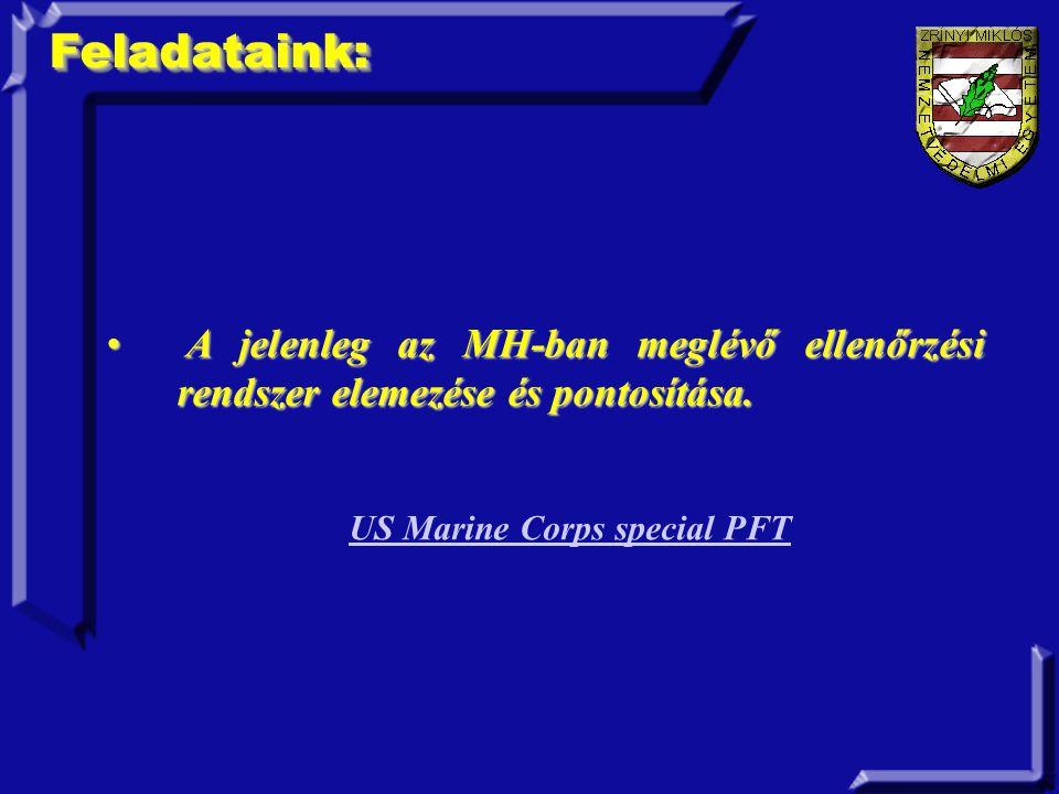 Feladataink:Feladataink: A jelenleg az MH-ban meglévő ellenőrzési rendszer elemezése és pontosítása.