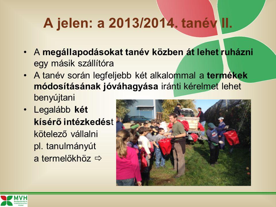 A jelen: a 2013/2014. tanév II.