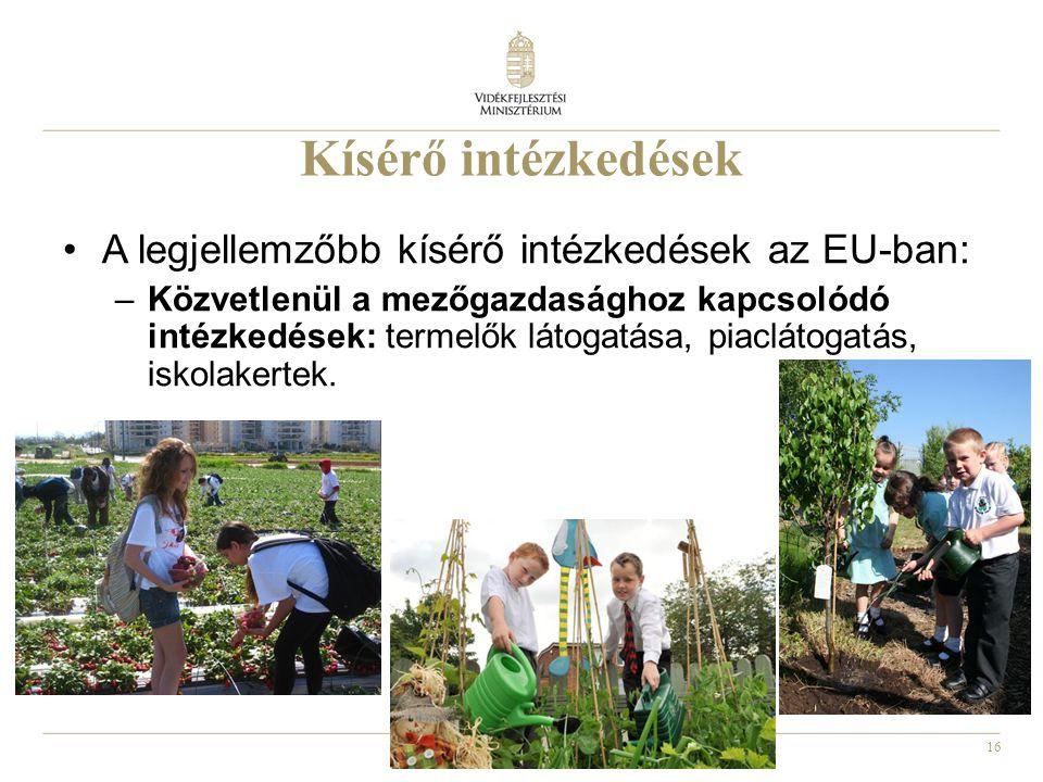 16 Kísérő intézkedések A legjellemzőbb kísérő intézkedések az EU-ban: –Közvetlenül a mezőgazdasághoz kapcsolódó intézkedések: termelők látogatása, pia