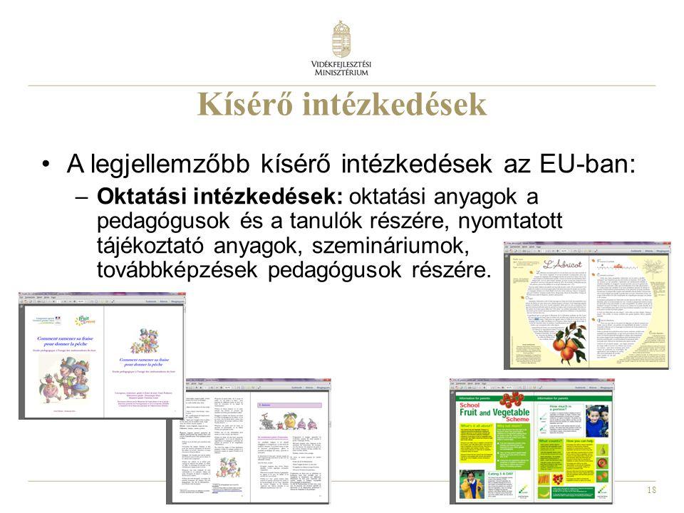 18 Kísérő intézkedések A legjellemzőbb kísérő intézkedések az EU-ban: –Oktatási intézkedések: oktatási anyagok a pedagógusok és a tanulók részére, nyo