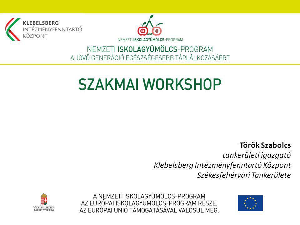 Török Szabolcs tankerületi igazgató Klebelsberg Intézményfenntartó Központ Székesfehérvári Tankerülete