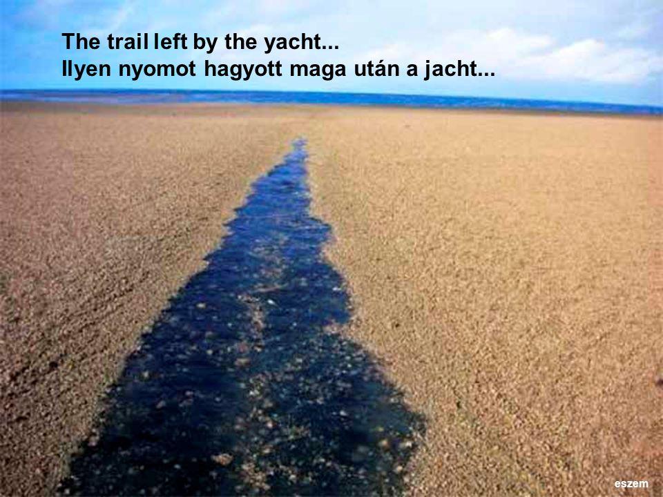 The trail left by the yacht... Ilyen nyomot hagyott maga után a jacht... eszem