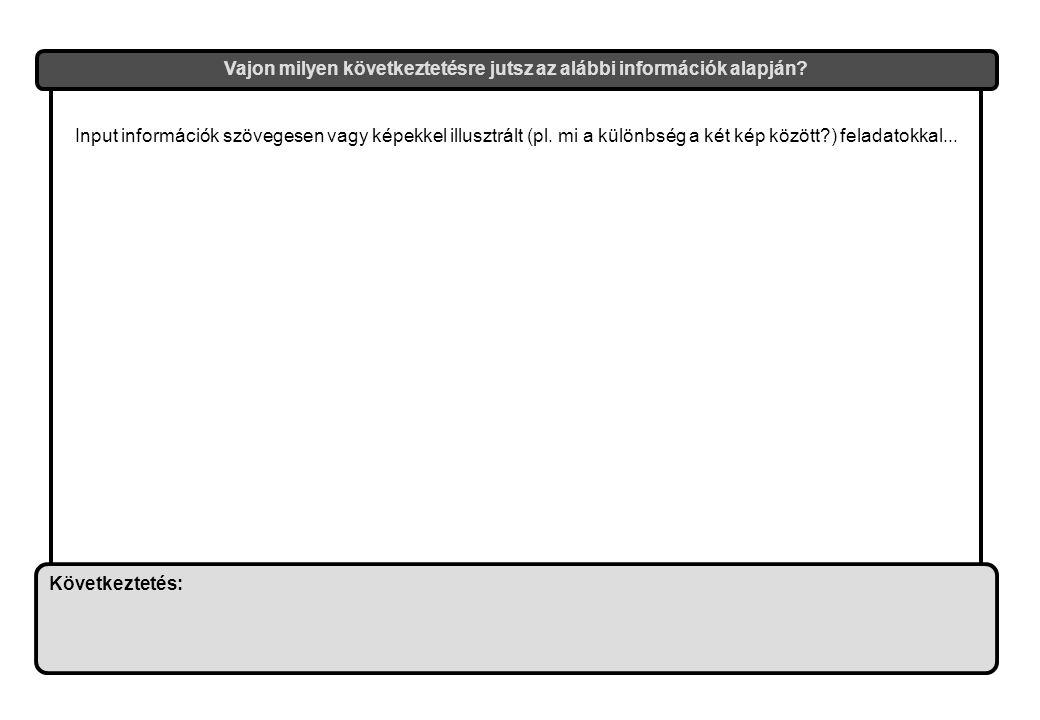 Input információk szövegesen vagy képekkel illusztrált (pl.