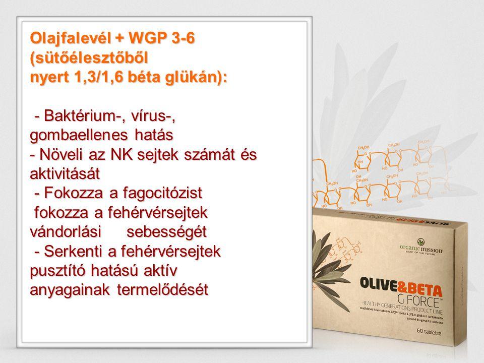 Olajfalevél + WGP 3-6 (sütőélesztőből nyert 1,3/1,6 béta glükán): - Baktérium-, vírus-, gombaellenes hatás - Baktérium-, vírus-, gombaellenes hatás -