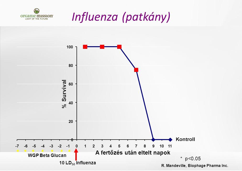 * p<0.05 A fertőzés után eltelt napok Kontroll % Survival 10 LD 50 Influenza WGP Beta Glucan R.