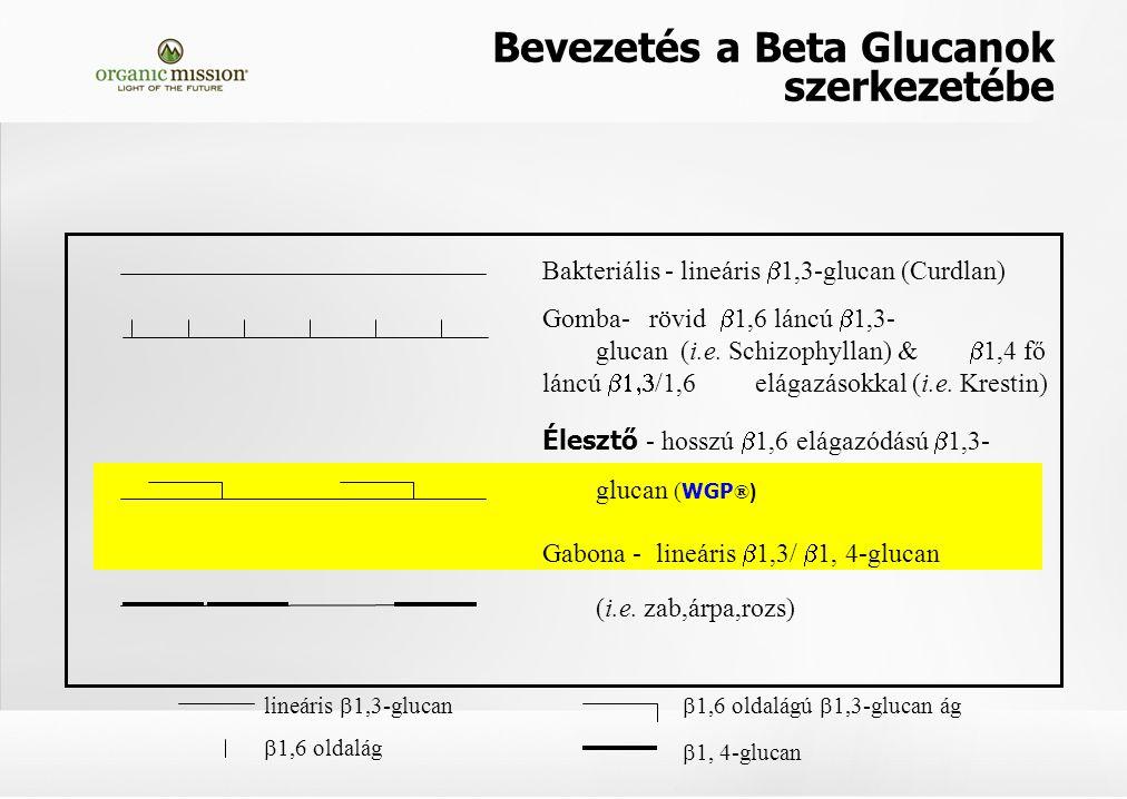 lineáris  1,3-glucan  1,6 oldalág  1,6 oldalágú  1,3-glucan ág  1, 4-glucan Bakteriális - lineáris  1,3-glucan (Curdlan) Gomba- rövid  1,6 láncú  1,3- glucan (i.e.