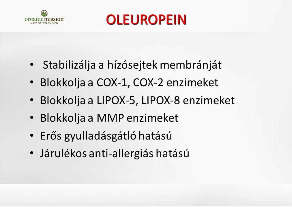 OLEUROPEIN Stabilizálja a hízósejtek membránját Blokkolja a COX-1, COX-2 enzimeket Blokkolja a LIPOX-5, LIPOX-8 enzimeket Blokkolja a MMP enzimeket Erős gyulladásgátló hatású Járulékos anti-allergiás hatású