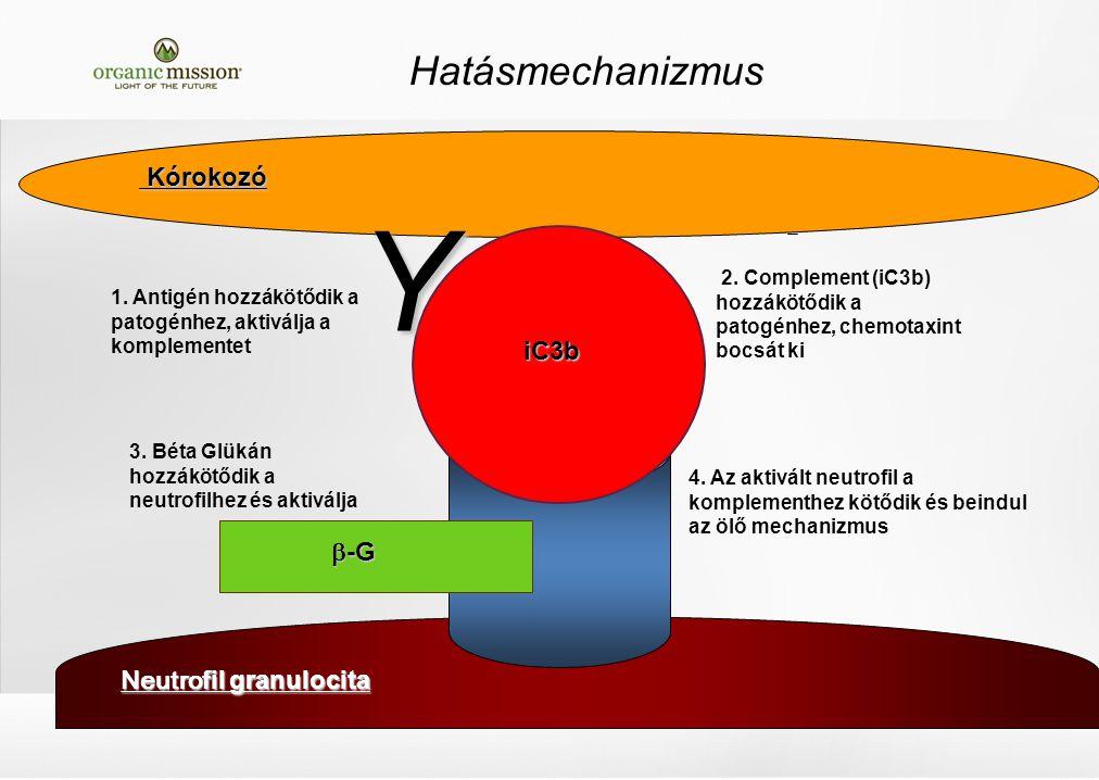 Wellmune  21 C ImmunitY Co- faktorok Wellmune