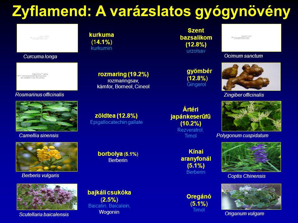 Zyflamend: A varázslatos gyógynövény Szent bazsalikom (12.8%) urzolsav Ocimum sanctum kurkuma (14.1%) kurkumin Curcuma longa Rosmarinus officinalis ro