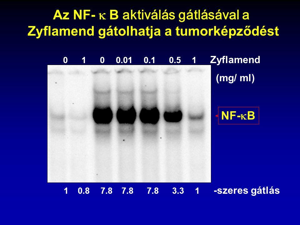 0 1 0 0.01 0.1 0.5 1 Zyflamend (mg/ ml) 1 0.8 7.8 7.8 7.8 3.3 1 -szeres gátlás NF-  B Az NF-  B aktiválás gátlásával a Zyflamend gátolhatja a tumo
