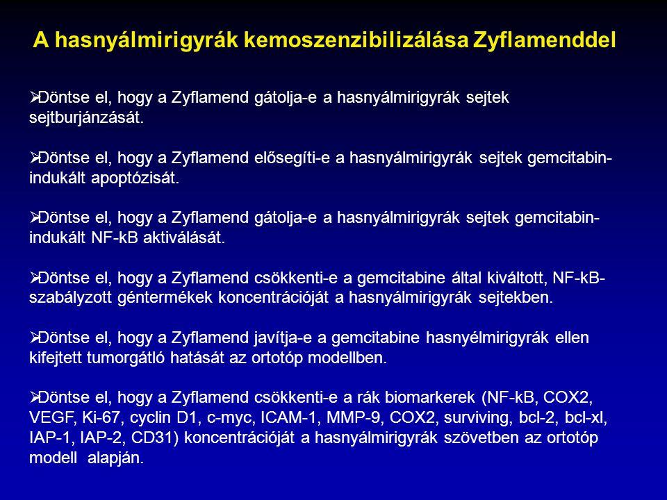 A hasnyálmirigyrák kemoszenzibilizálása Zyflamenddel  Döntse el, hogy a Zyflamend gátolja-e a hasnyálmirigyrák sejtek sejtburjánzását.  Döntse el, h