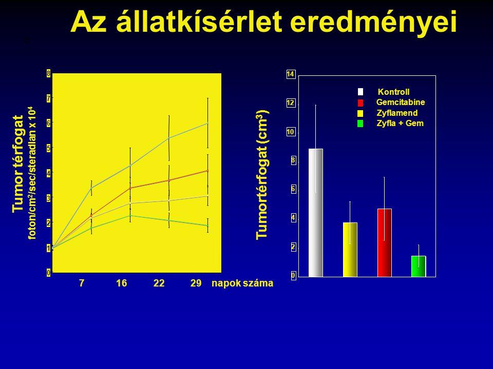 Tumor térfogat foton/cm 2 /sec/steradian x 10 4 7 16 22 29 napok száma * * *P<0.001 C Vehicle Gemcitabine Zyflamend Zyfla + Gem 0 2 4 6 8 10 12 14 Kon