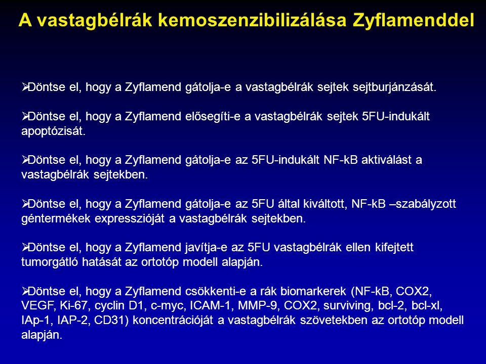  Döntse el, hogy a Zyflamend gátolja-e a vastagbélrák sejtek sejtburjánzását.  Döntse el, hogy a Zyflamend elősegíti-e a vastagbélrák sejtek 5FU-ind