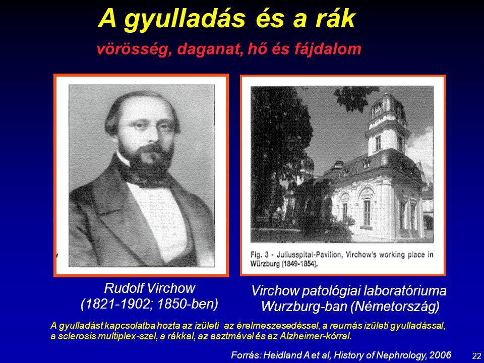 A gyulladás és a rák Rudolf Virchow (1821-1902; 1850-ben) Virchow patológiai laboratóriuma Wurzburg-ban (Németország) vörösség, daganat, hő és fájdalo