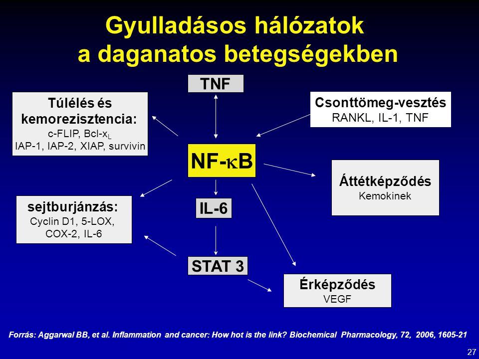 TNF Érképződés VEGF NF-  B IL-6 STAT 3 sejtburjánzás: Cyclin D1, 5-LOX, COX-2, IL-6 Áttétképződés Kemokinek Túlélés és kemorezisztencia: c-FLIP, Bcl-