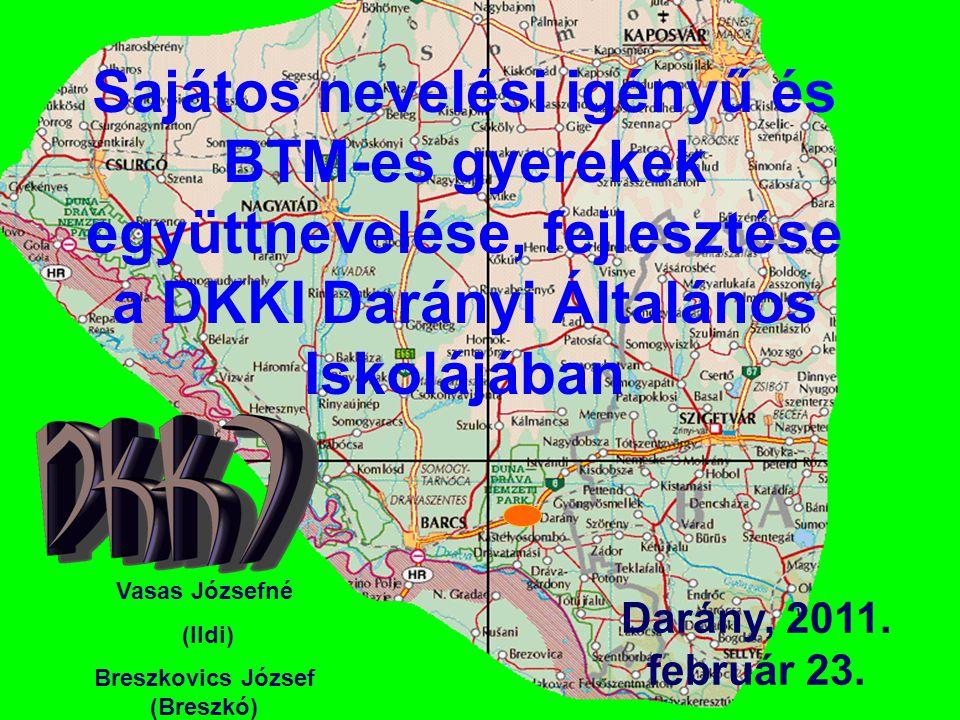 Sajátos nevelési igényű és BTM-es gyerekek együttnevelése, fejlesztése a DKKI Darányi Általános Iskolájában Darány, 2011. február 23. Vasas Józsefné (