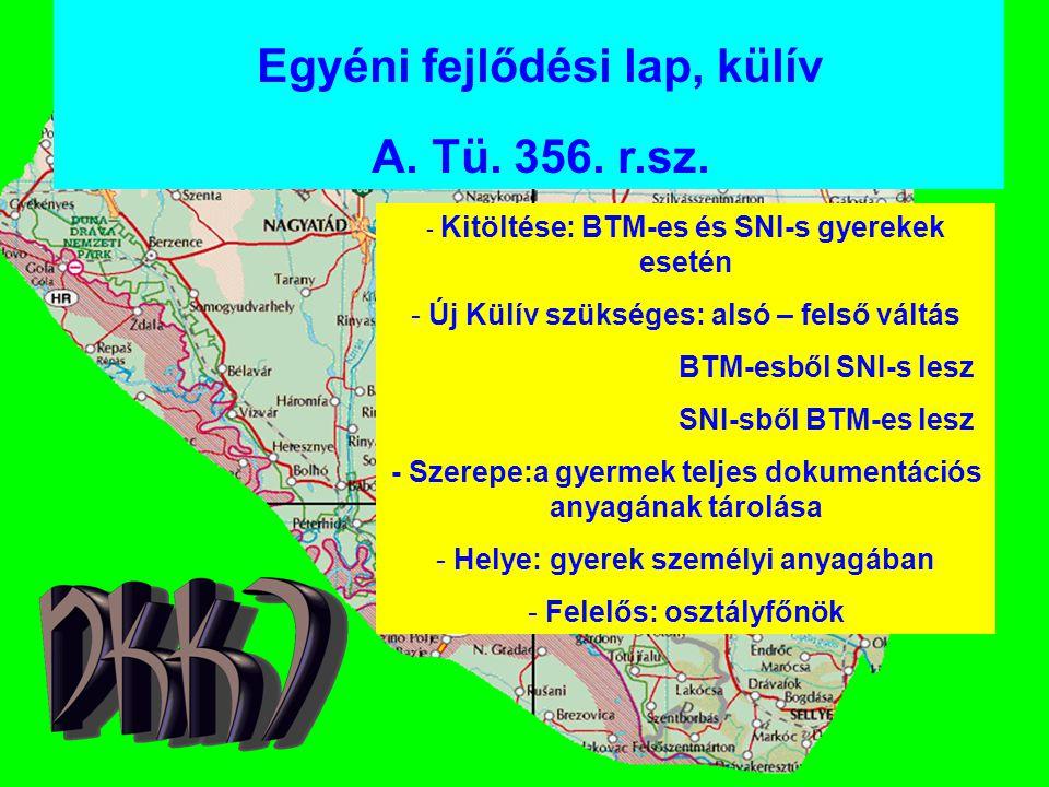 Egyéni fejlődési lap, külív A. Tü. 356. r.sz. - Kitöltése: BTM-es és SNI-s gyerekek esetén - Új Külív szükséges: alsó – felső váltás BTM-esből SNI-s l