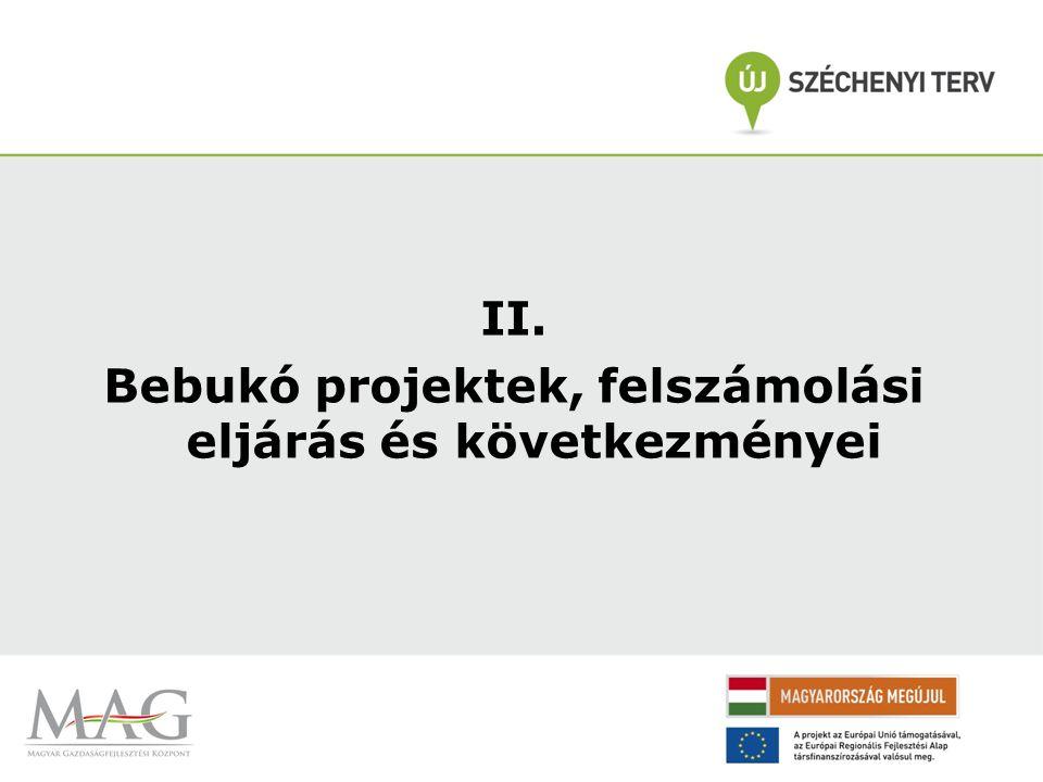 II. Bebukó projektek, felszámolási eljárás és következményei