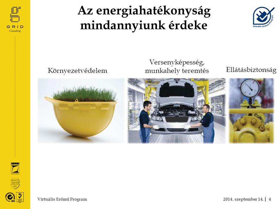 Az energiahatékonyság mindannyiunk érdeke 2014. szeptember 14.4Virtuális Erőmű Program Környezetvédelem Versenyképesség, munkahely teremtés Ellátásbiz