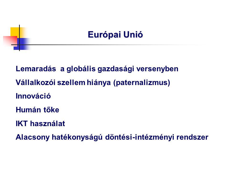 Európai Unió Lemaradás a globális gazdasági versenyben Vállalkozói szellem hiánya (paternalizmus) Innováció Humán tőke IKT használat Alacsony hatékony