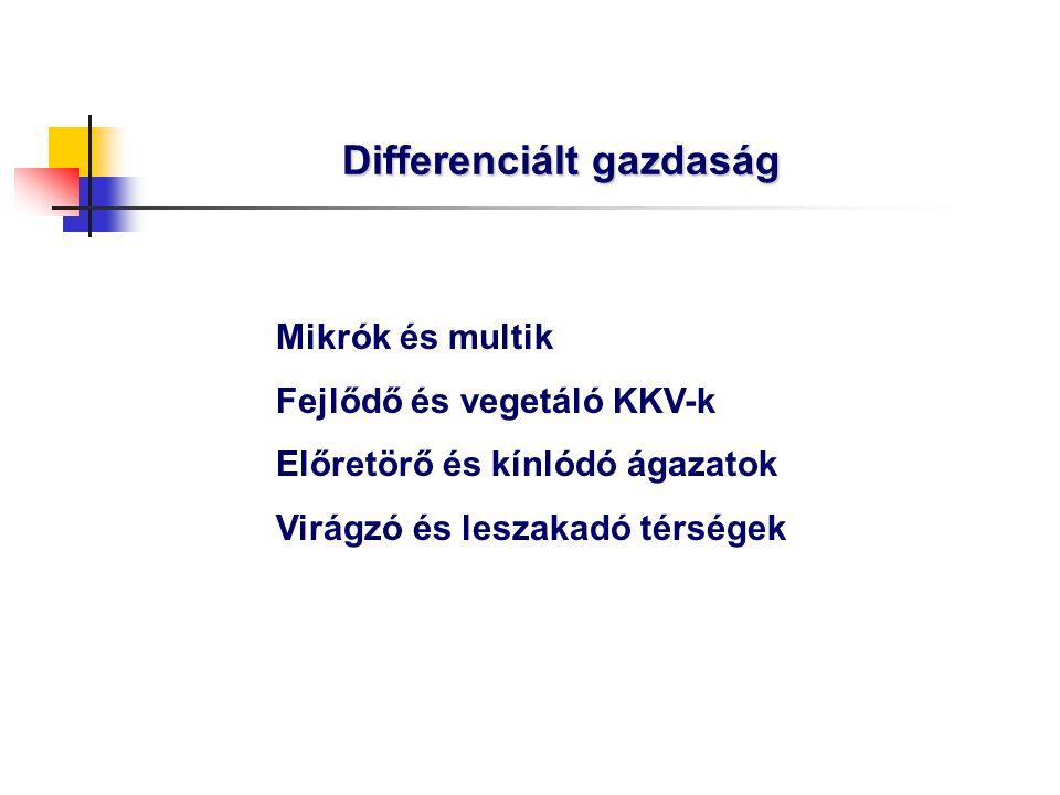 """""""B Rossz világgazdasági feltételek, előrehaladó magyar reformok Szerényebb külföldi befektetések, kevesebb hazai forrás Mérsékeltebb ütemű modernizáció  Lassúbb, 3-3,5% GDP növekedés  Az euroövezeti csatlakozás inkább csak 2011-2013-ban lehetséges"""