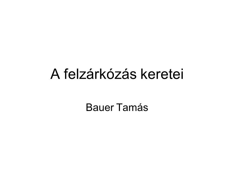 A felzárkózás keretei Bauer Tamás