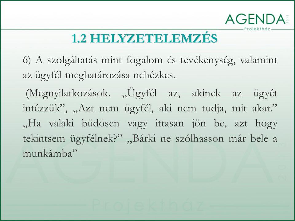 6) A szolgáltatás mint fogalom és tevékenység, valamint az ügyfél meghatározása nehézkes.