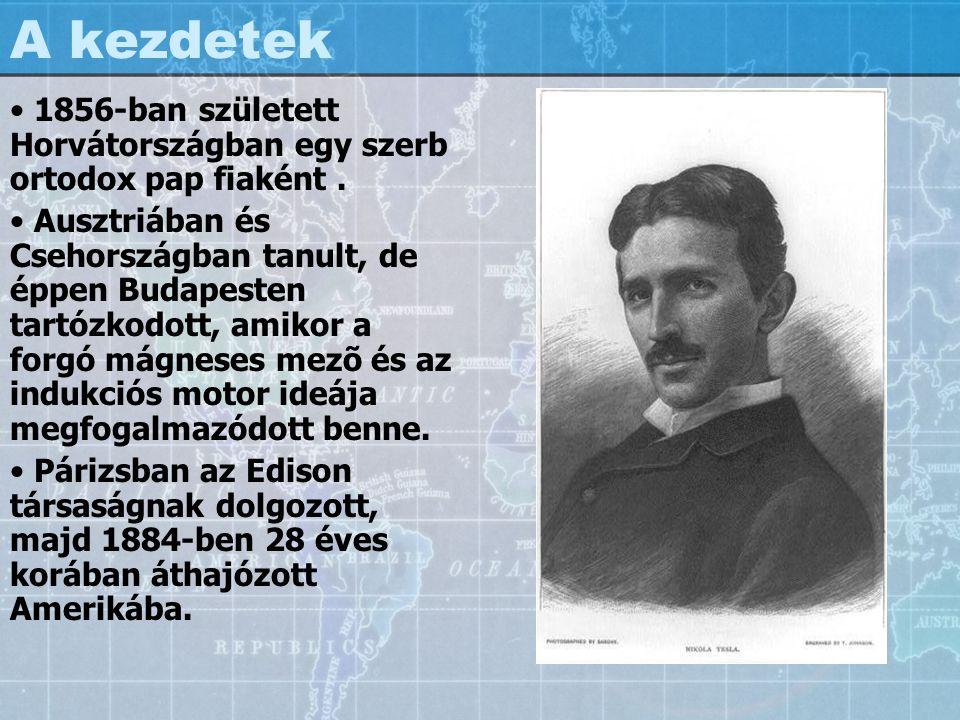 A kezdetek 1856-ban született Horvátországban egy szerb ortodox pap fiaként. Ausztriában és Csehországban tanult, de éppen Budapesten tartózkodott, am