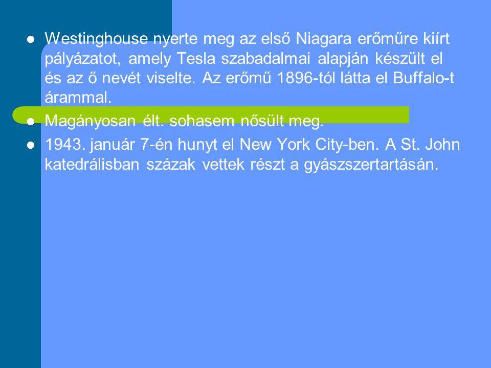 Westinghouse nyerte meg az első Niagara erőműre kiírt pályázatot, amely Tesla szabadalmai alapján készült el és az ő nevét viselte.