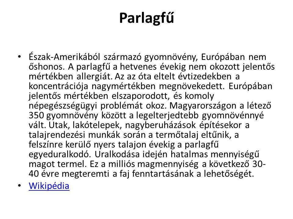 Parlagfű Észak-Amerikából származó gyomnövény, Európában nem őshonos. A parlagfű a hetvenes évekig nem okozott jelentős mértékben allergiát. Az az óta