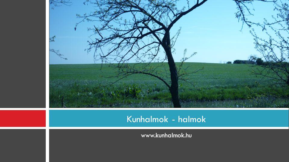 www.kunhalmok.hu Kunhalmok - halmok
