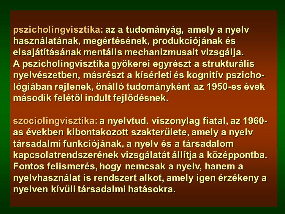 Struktúra Használat Pragmatika Szemantika Nyelvtan Közvetítő eszköz FonetikaFonológia Morfológia SzintaxisSzókincs Diskurzus Diskurzus A beszélt nyelv