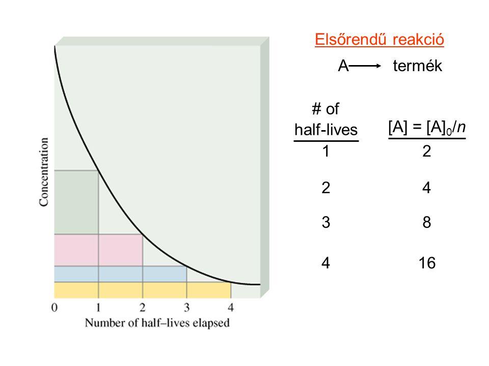 A termék Elsőrendű reakció # of half-lives [A] = [A] 0 /n 1 2 3 4 2 4 8 16