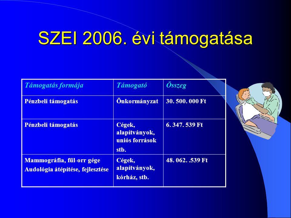 SZEI 2006. évi támogatása Támogatás formájaTámogatóÖsszeg Pénzbeli támogatásÖnkormányzat30. 500. 000 Ft Pénzbeli támogatásCégek, alapítványok, uniós f